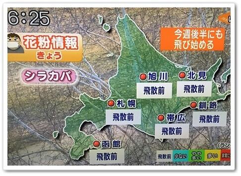 北海道の花粉情報